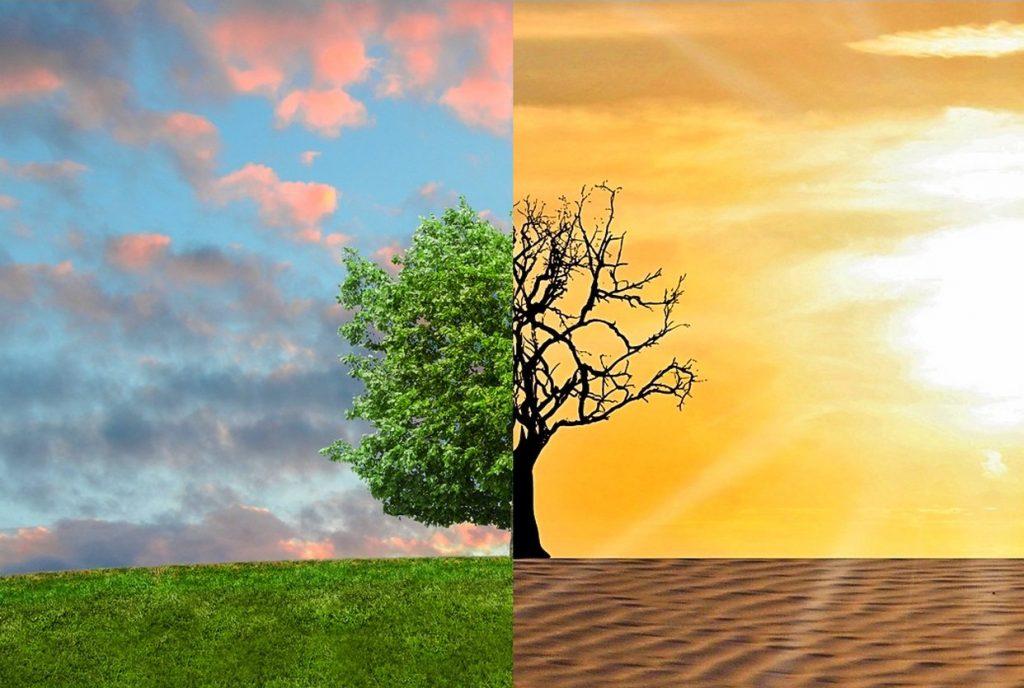 مخاطر تغير المناخ