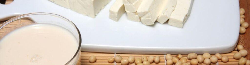 6 – حليب الصويا مع حليب الصويا المكثف Silken Tofu and Soy Milk