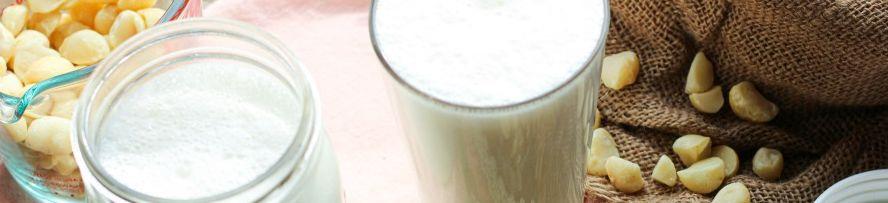 2 – حليب المكاديميا Macadamia Milk