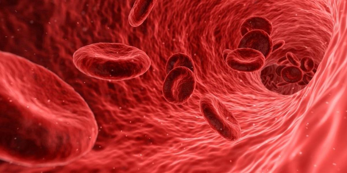 زيادة الفيريتين في الدم