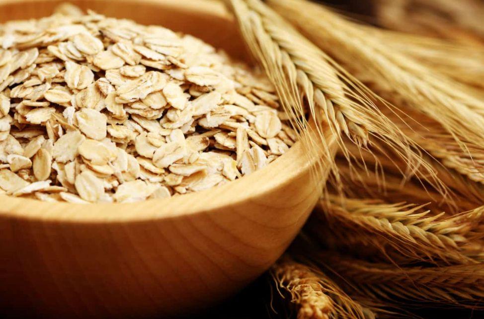 هل الشوفان هو القمح؟ وما هو الفرق بين الشوفان والقمح؟