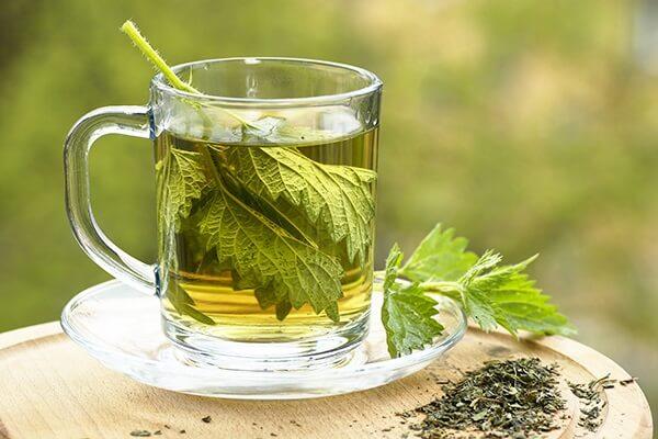 شاي من اوراق القراص