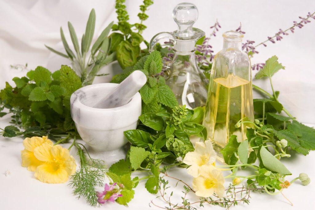 أعشاب لعلاج ألم المعدة