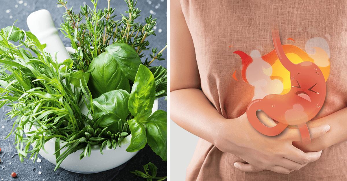 اطعمة لعلاج جرثومة االمعدة