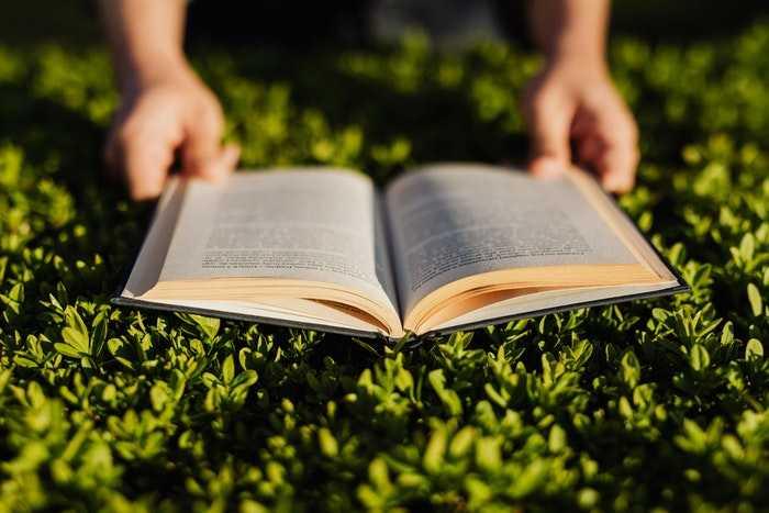قراءة كتاب في الخارج على العشب