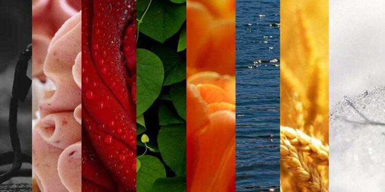 دليل معاني الألوان ... 12 لون يؤثر بك وعليك ويشير إلى الكثير