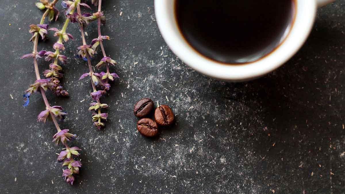 طريقة عمل صوص النسكافيه ... 10 وصفات لكثير من القهوة