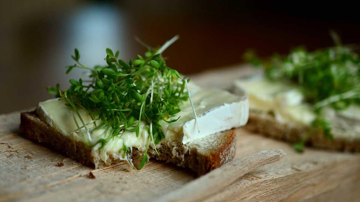 فطيرة الجبن والزعتر ... 7 وصفات و5 منها سهلة وسريعة