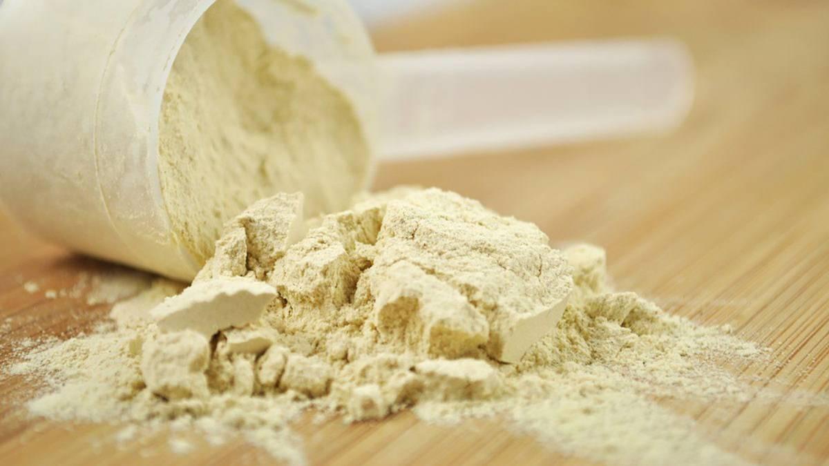 بروتين مصل اللبن