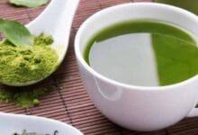 شرب الشاي الأخضر على الريق